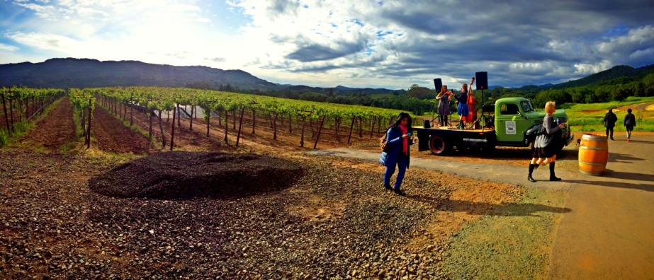 band-plays-by-the-vineyard